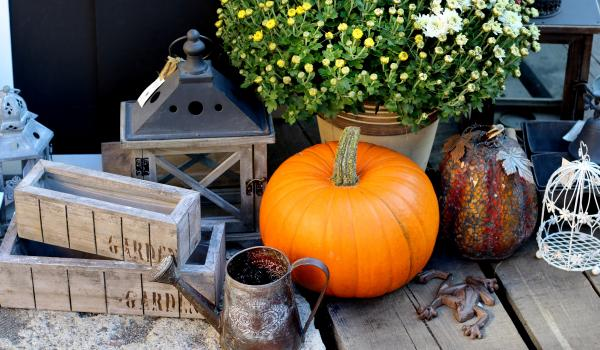 Fall in Love with these decorating ideas